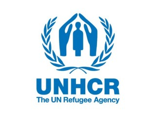 United Nations High Commissioner for Refugees(UNHCR)
