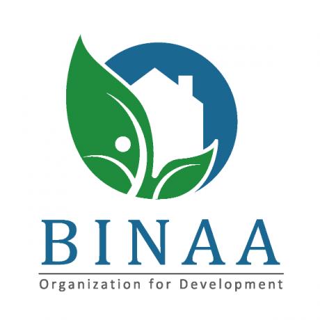 Logo BINAA for Development