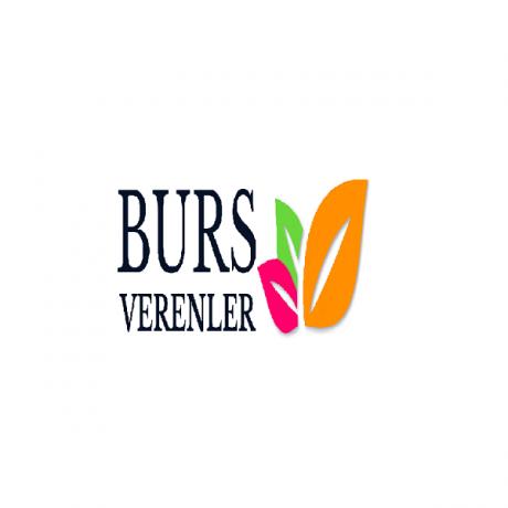Logo Burs Verenler