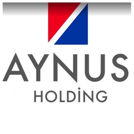 Logo Aynus Holding