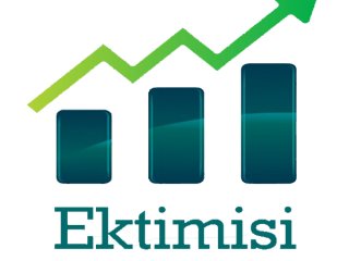 Ektimisi Consultancy